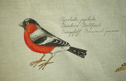 Boras BIRDS Ann-Cathrine Sigrid_domherre