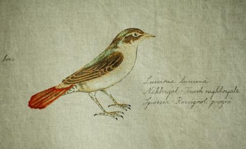 Boras BIRDS Ann-Cathrine Sigrid_naktergal
