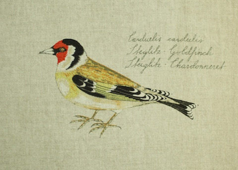 Boras BIRDS Ann-Cathrine Sigrid_steglitz